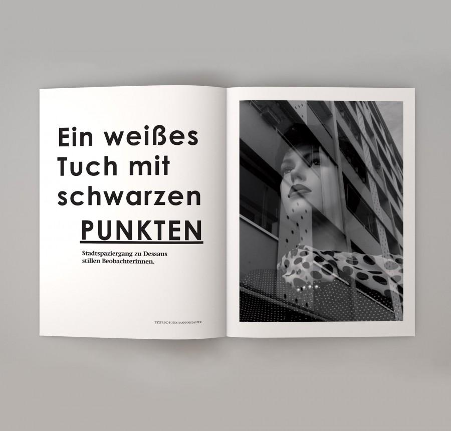 Campusmagazin Dessau: Stille Beobachterinnen